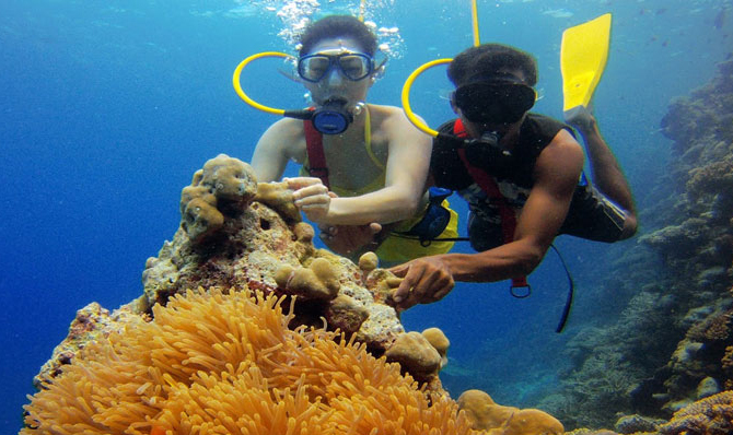 Lakshadweep coral reefs tourist places india