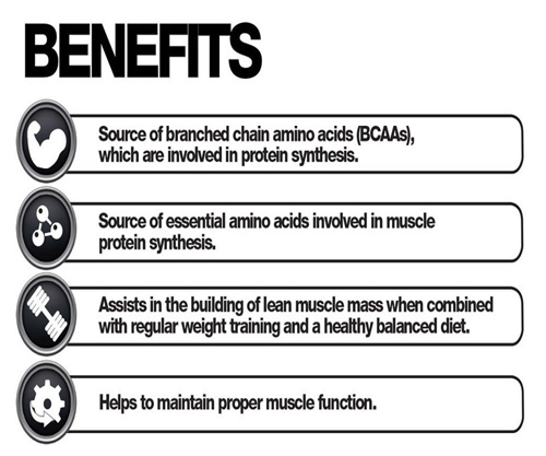 Benefits of BCAA infographic