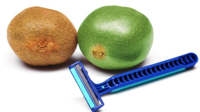 Photo of a shaver with a hairy ball and a shaven ball