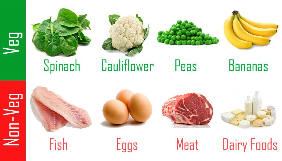 veg and non veg protein