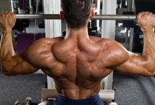 What Muscles do the Lat Pulldown Work On